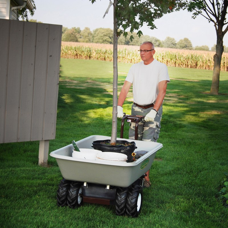9 Cubic Foot Electric Wagon