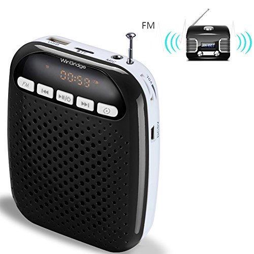 S378 Mini Light Voice Amplifier with Wired Microphone