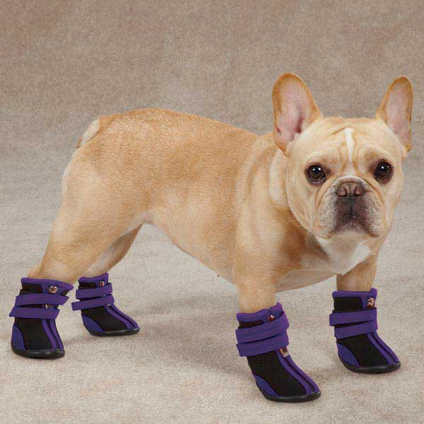 Top Paw Reflective Booties